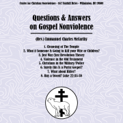 Questions & Answers on Gospel Nonviolence